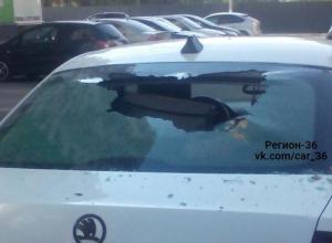 Преступление и наказание на парковке сфотографировали в Воронеже