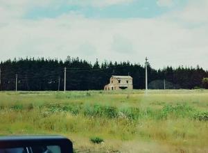 Жутковатый улыбающийся дом заметили среди поля в Воронежской области