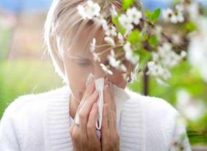 Воронежские аллергики смогут узнать, где их подстерегает пыльца