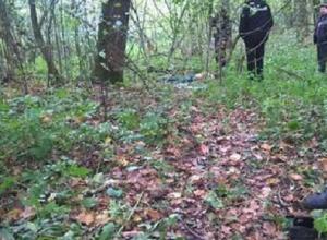 Тело убитой 14-летней девочки нашли в лесу в Воронежской области