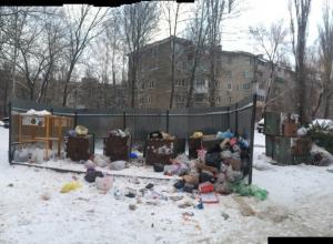На скандальной мусорке по Хользунова в Воронеже коммунальщики взялись за старое