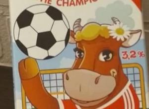 Корову, предсказавшую победу сборной России, нашли в Воронеже