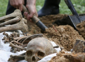 Неразорвавшийся снаряд и останки солдат обнаружили на воронежской стройке