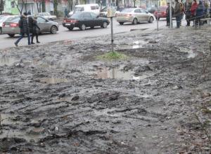 Воронежцы предложили мэру Гусеву пройтись по утонувшим в грязи тротуарам Северного