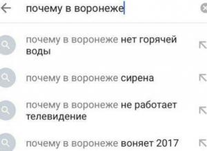Пользователи Сети высмеяли странные поисковые запросы с Воронежем