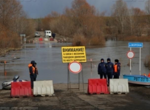 Во время весеннего паводка в Воронежской области затопило 19 мостов