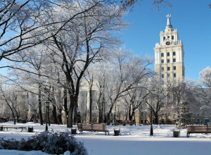 Синоптики рассказали, когда в Воронеж вернется снег
