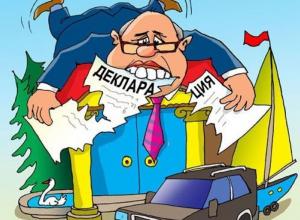 Воронежские депутаты скрывали сведения о доходах и земельных участках