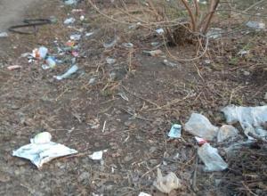 Воронежцы выяснили, чья мусорка больше
