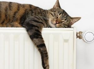 В четверг в Воронеже отключат отопление