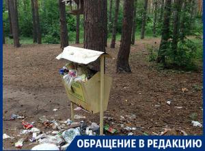 Свинством ответили в Воронеже на благодарность за чистоту