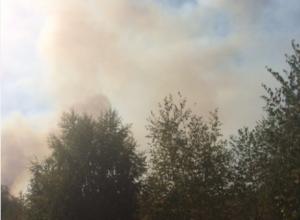 Чудовищный пожар на Левом берегу Воронежа тушат 107 человек