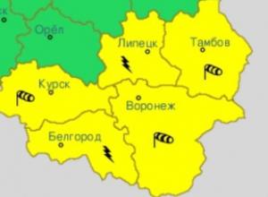 Желтая опасность снова грозит Воронежу