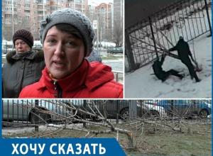 Воронежцы просят губернатора найти и наказать виновных в варварском уничтожении деревьев на Бульваре Победы