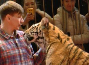 Лишившийся ног укротитель хищников в Воронеже: Я научился дрессировать львиц взглядом