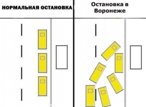 Идиотизм воронежских маршрутчиков у остановки показали на схеме