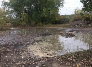 Гендиректор ООО «ЛОС»: «Воды повышенной токсичности  «ЭкоЛайнера» могут нанести непоправимый ущерб Воронежскому водохранилищу»