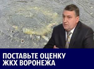 Фекальные гейзеры и «убийство наледью» главного коммунальщика Воронежа: итоги 2017 года