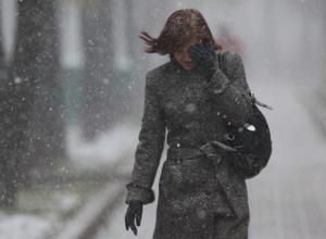 Резкое похолодание и снег ожидаются в Воронеже на выходных