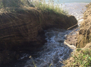 Под Воронежем экспертиза определит границы скандального озера Круглого