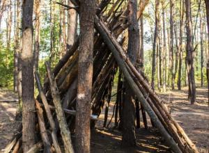 В воронежском лесу обнаружили загадочный вигвам