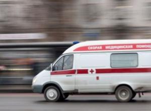 Под Воронежем парню проломили голову монтировкой за сбитую насмерть собаку