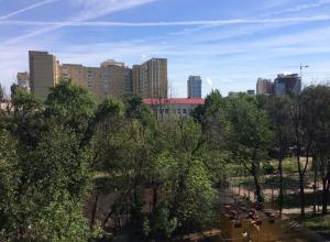На новой рабочей неделе в Воронеже ожидается теплая и солнечная погода