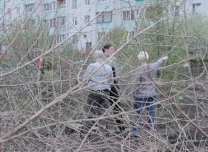 Под Воронежем при попустительстве властей строители захватили сады и огороды пенсионеров