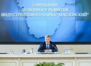 Воронежские власти компенсируют из бюджета затраты резидентов парка «Масловский»