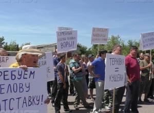 Воронежская Кущёвка заняла почётное место в списке «общественных волнений в регионах России»