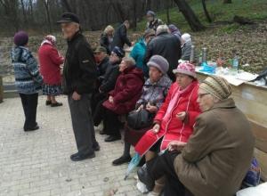 Тусовку с баяном и огурчиками устроили воронежские пенсионеры в честь Ленина