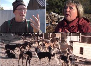 Будем сажать на вилы! – соседи пообещали устроить самосуд над главным воронежским зоозащитником
