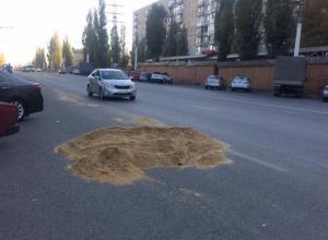 Огромный кошачий лоток посреди дороги сняли в Воронеже