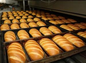 Ускоренную выплату субсидий воронежские хлебопекари попросят у президента России