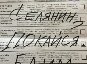 Александра Бастрыкина и Юрия Чайку попросили не медлить с расследованием фальсификации на выборах в Воронеже