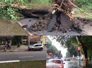 Последствия воронежского урагана – какие беды принесло ненастье горожанам