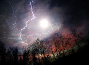 Синоптики объявили в Воронежской области желтый уровень опасности