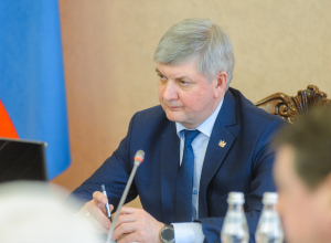 Воронежские чиновники отчитались о зарплатах бюджетников