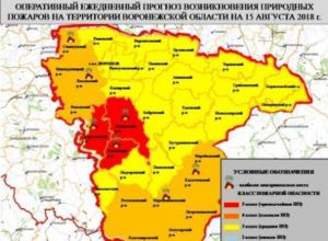 В Воронежской области объявлена чрезвычайная пожароопасность
