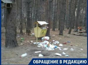 Воронежский особо охраняемый Северный лес превратился в помойку