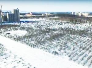 Воронежцы увидели скандальный Яблоневый сад с высоты птичьего полета