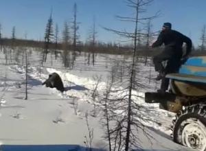 Житель Воронежа требует наказать жестоких живодёров, убивших бурого медведя в Якутии