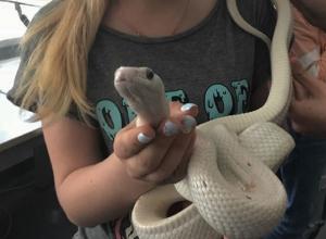 Воронежские школьницы устроили опасную фотосессию со змеями