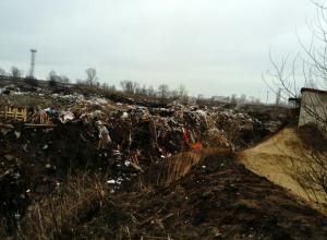 В Воронежской области за 2016 год скопилось более 8 миллионов тонн мусора