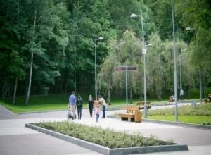 Власти Воронежа хотят изменить концепцию развития Центрального парка