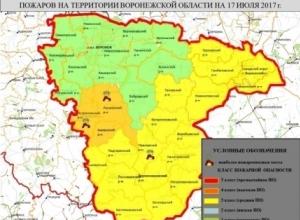 Воронежские спасатели предупредили о высокой степени пожарной опасности