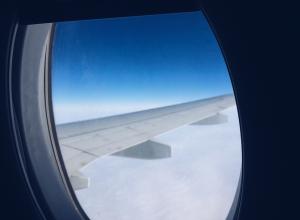 Туман в Воронеже препятствует вылету самолетов в Москву