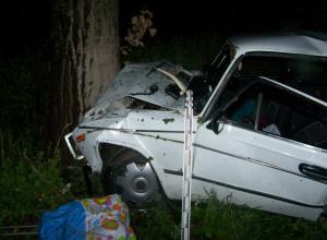 Водитель ВАЗа погиб после столкновения с деревом в воронежском селе