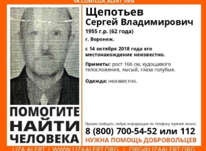 В Воронеже ищут 62-летнего лысого мужчину