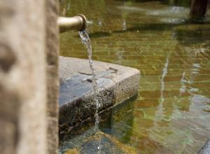 Санитарные врачи: вода из родников вредна и опасна для воронежцев